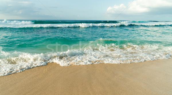 North Shore Oahu Hawaii Bonsai Pipline Pacific Ocean United Stat Stock photo © cboswell
