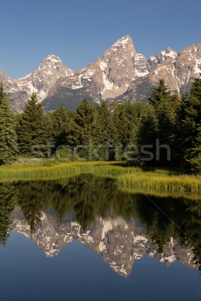 Teton Range Smooth Water Reflecting Grand Teton's National Park Stock photo © cboswell