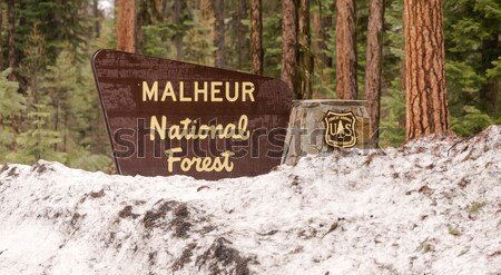 Stock photo: Ginko Petrified Forest State Park Entrance Sign Washington State