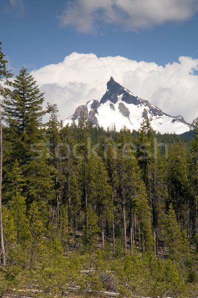 Big Cowhorn Mt. Thielsen Extinct Volcano Oregon Cascade Range Mo Stock photo © cboswell