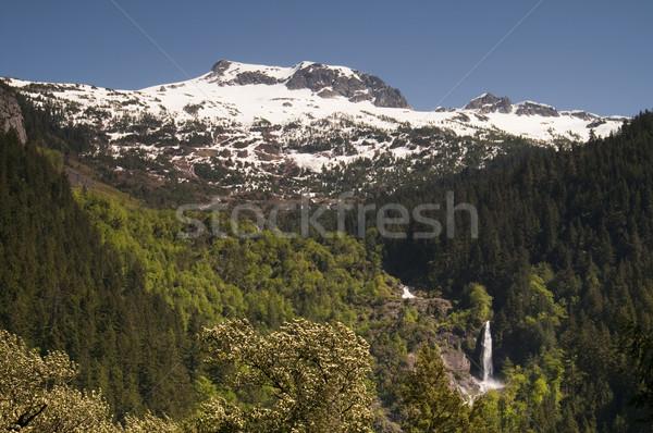 Gleccser vízesés észak vízesés hegyek víz Stock fotó © cboswell