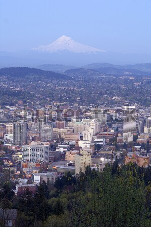 Portland Sky Stock photo © cboswell