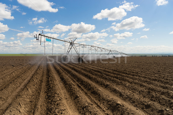 Center-Pivot Irrigation Waterwheel Circle Irrigator Farm Field A Stock photo © cboswell