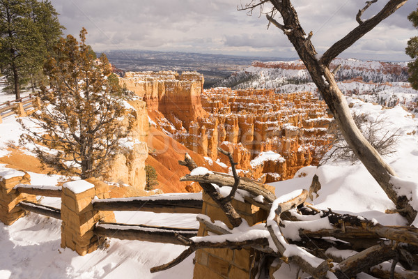 Fresh Snow Blankets Bryce Canyon Rock Formations Utah USA Stock photo © cboswell