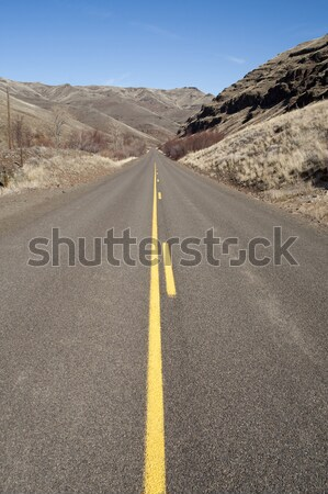 Lonely Two Lane Divided Highway Cuts Through Dry Hills Landscape Stock photo © cboswell