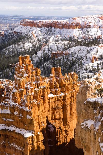 свежие снега каньон рок Юта США Сток-фото © cboswell