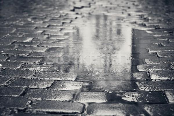 лужа улице дождливый день отражение здании Сток-фото © Chalabala