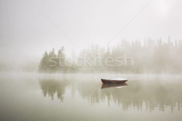 Tekne gizemli sis göl sabah orman Stok fotoğraf © Chalabala