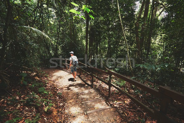 Lopen regenwoud jonge man lopen tropische eiland Stockfoto © Chalabala