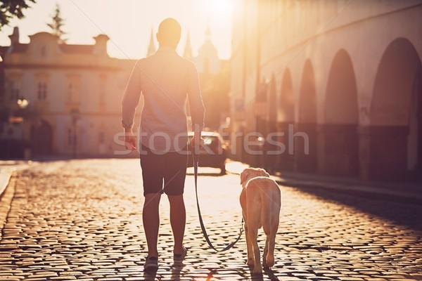 Sabah şehir genç yürüyüş köpek eski Stok fotoğraf © Chalabala