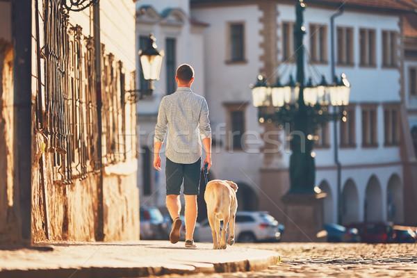 Reggel város fiatalember sétál kutya öreg Stock fotó © Chalabala