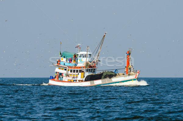 Tajlandia ptaków wody ryb Zdjęcia stock © chatchai