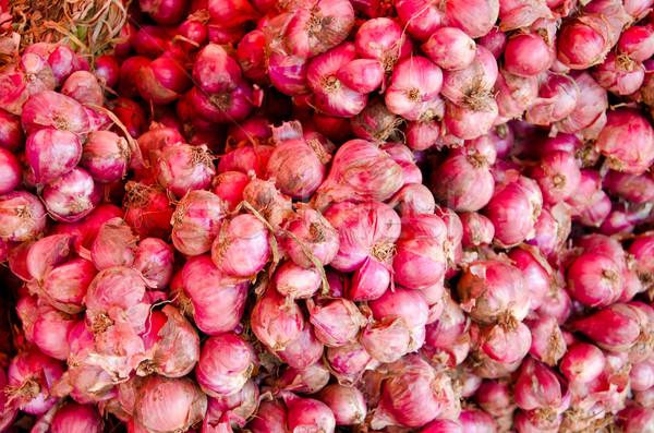 Składnik żywności charakter ogród grupy Zdjęcia stock © chatchai