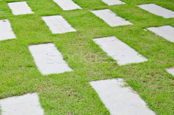 Parku chodzić ścieżka zielona trawa tekstury Zdjęcia stock © chatchai