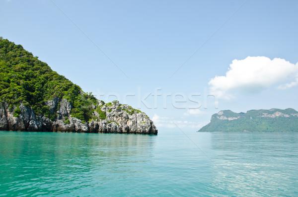 Parlak yeşil ada deniz deniz park Stok fotoğraf © chatchai