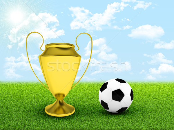Soccer ball and gold cup in the middle of field Stock photo © cherezoff