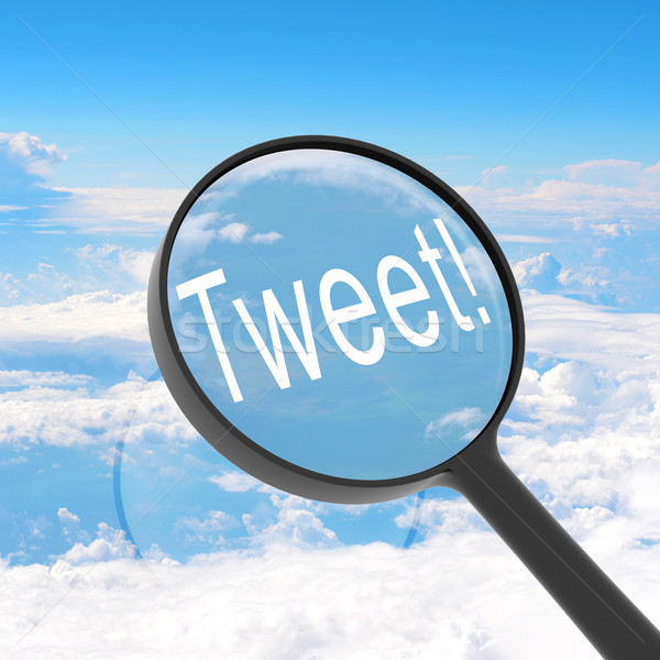 Magnifying glass looking Tweet Stock photo © cherezoff