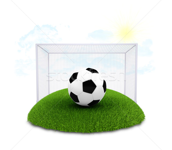 Soccer ball and gate on plot of green grass Stock photo © cherezoff