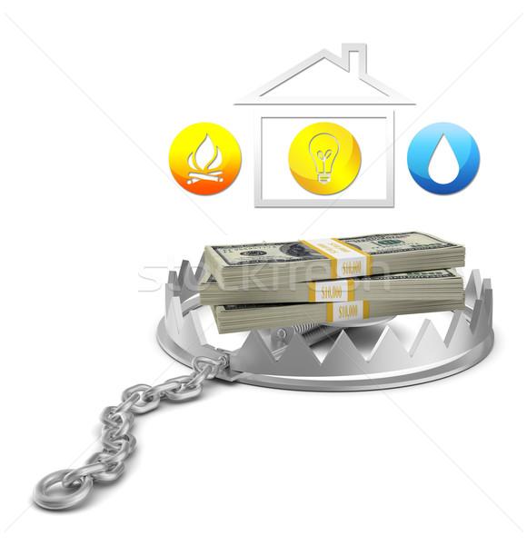 Efectivo casa icono tener trampa aislado Foto stock © cherezoff