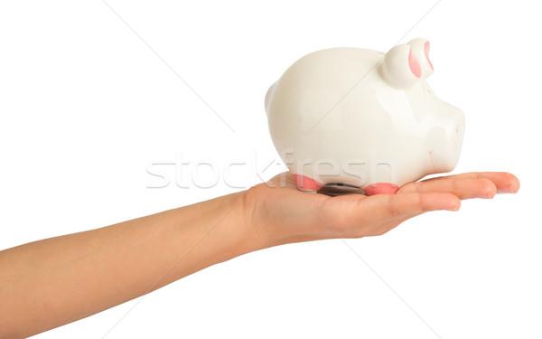 Piggy bank in humans hand Stock photo © cherezoff