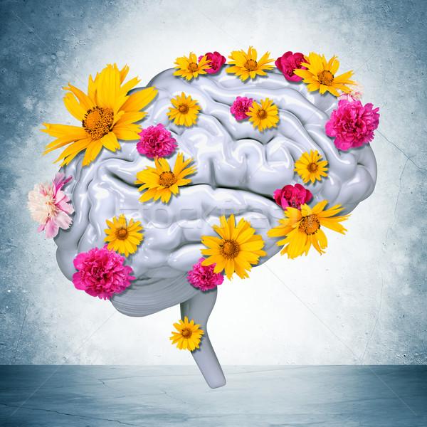 Cérebro humano flores cinza parede 3D Foto stock © cherezoff