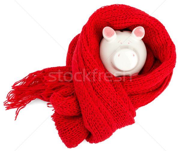Piggy bank with red scarf Stock photo © cherezoff