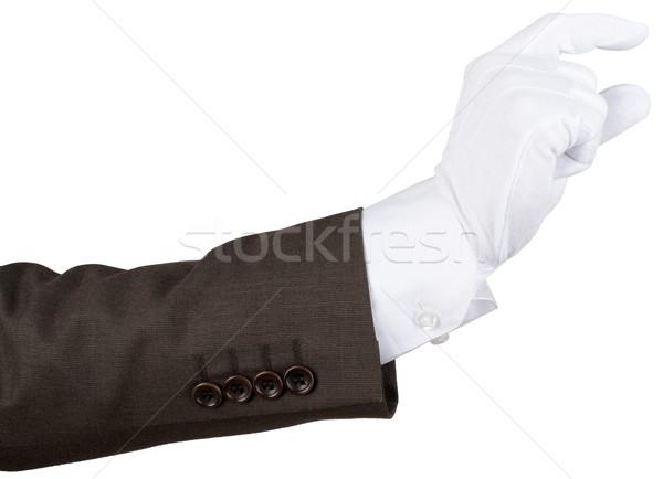 Zarif insan eli yalıtılmış beyaz el arka plan Stok fotoğraf © cherezoff