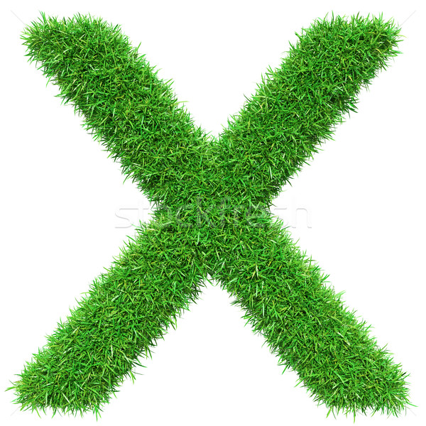 Stock photo: Green Grass Letter X
