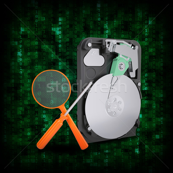 HDD with magnifying glass and screwdriver Stock photo © cherezoff