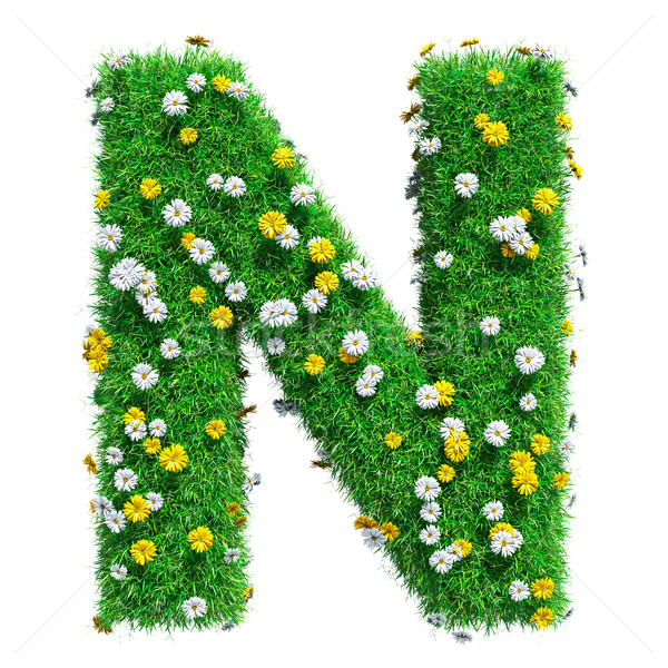 Letter N Of Green Grass And Flowers Stock photo © cherezoff
