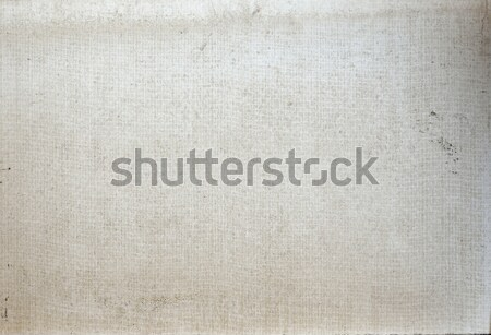 Plate of glass fibers and gypsum Stock photo © cherezoff