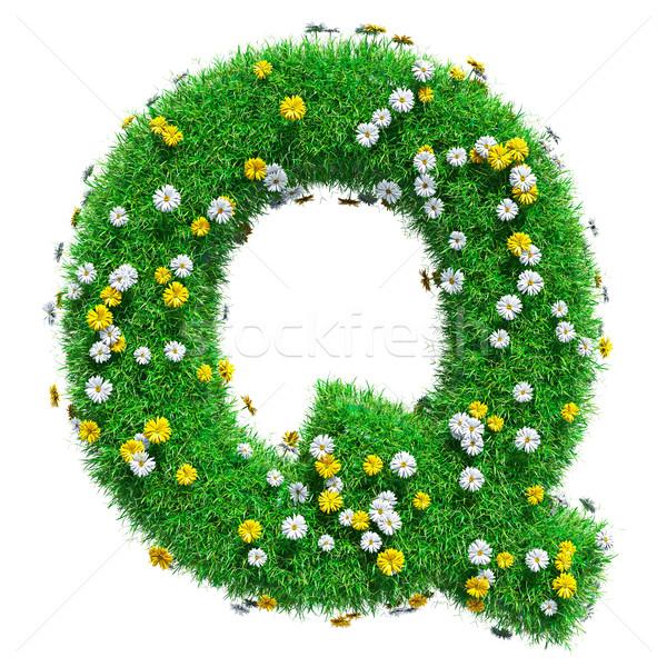 буква q зеленая трава цветы изолированный белый шрифт Сток-фото © cherezoff