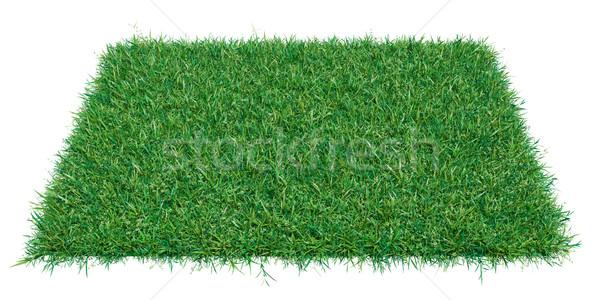 Vázlat téglalap darab zöld fű üres hely termék Stock fotó © cherezoff