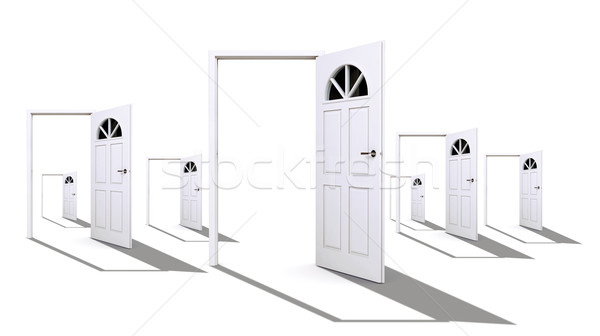 White open doors Stock photo © cherezoff