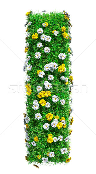 Letter i groen gras bloemen geïsoleerd witte doopvont Stockfoto © cherezoff
