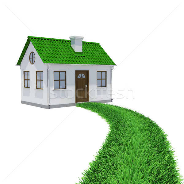 The path of grass leading to a small house Stock photo © cherezoff