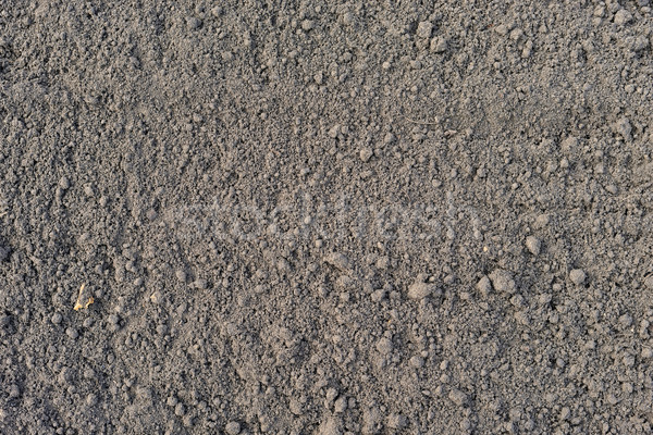 Cultivated brown soil surface Stock photo © cherezoff