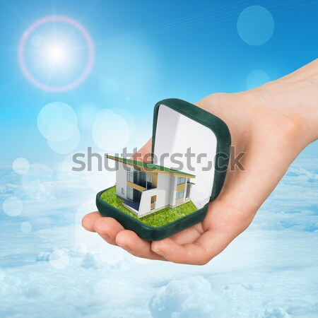House is falling from the sky. Nature landscape with water on background Stock photo © cherezoff