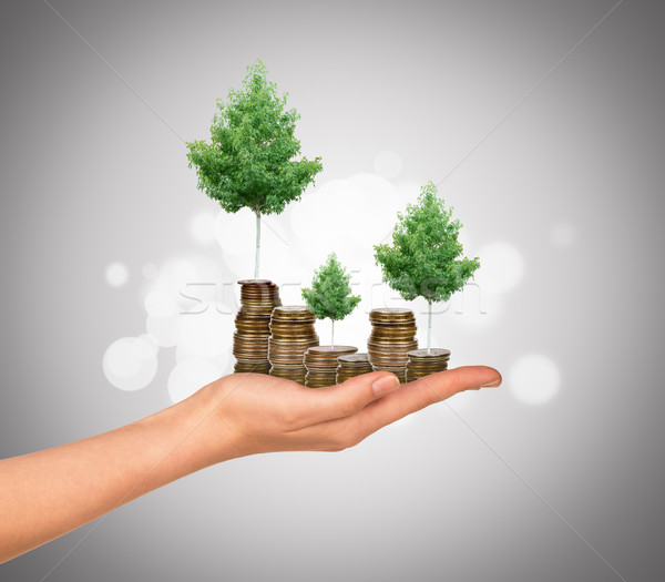 Humans arm holding tree and coins Stock photo © cherezoff