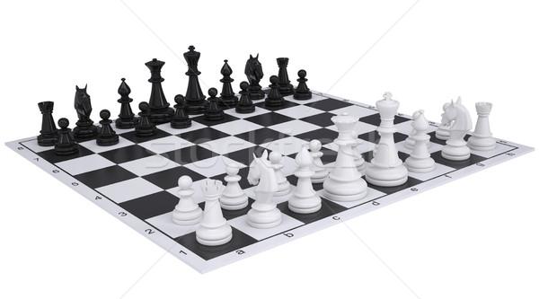 Chess on the chessboard Stock photo © cherezoff