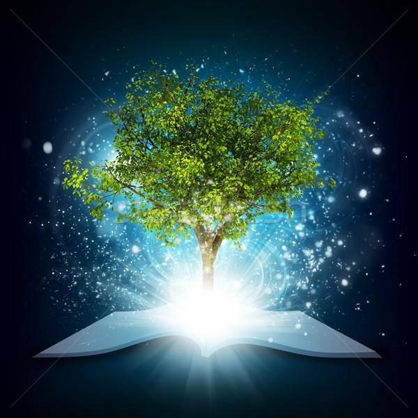 Nyitott könyv varázslatos zöld fa sugarak fény sötét Stock fotó © cherezoff