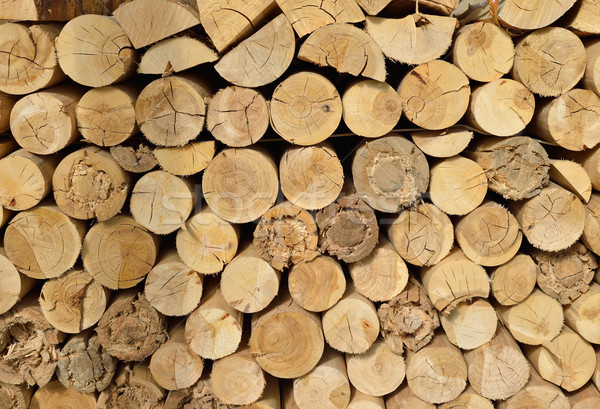 Fa aprított tűzifa egymásra pakolva boglya természetes Stock fotó © cherezoff