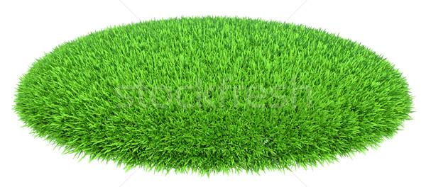 Grass arena isolated on white background Stock photo © cherezoff