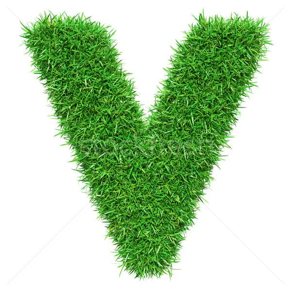 Green Grass Letter V Stock photo © cherezoff