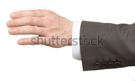 Businessmans hand holding empty space on white Stock photo © cherezoff