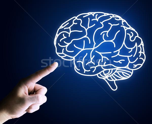 Ludzka ręka wskazując palec mózgu ikona niebieski Zdjęcia stock © cherezoff