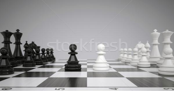 Dos tablero de ajedrez gris caballo ajedrez negro Foto stock © cherezoff