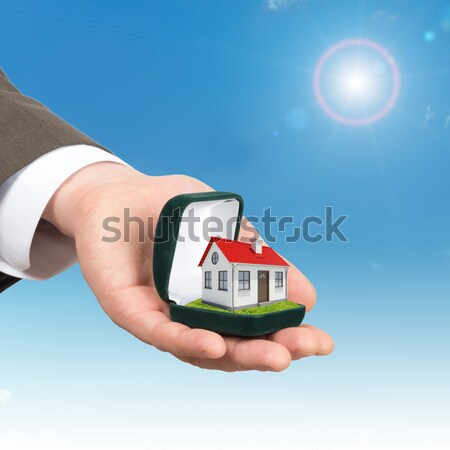 Hands holding house on green grass with label for sale red roof, chimney, tree, wind turbine. Backgr Stock photo © cherezoff
