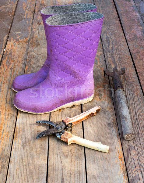 Wellingtons with garden tools on floor, side view Stock photo © cherezoff