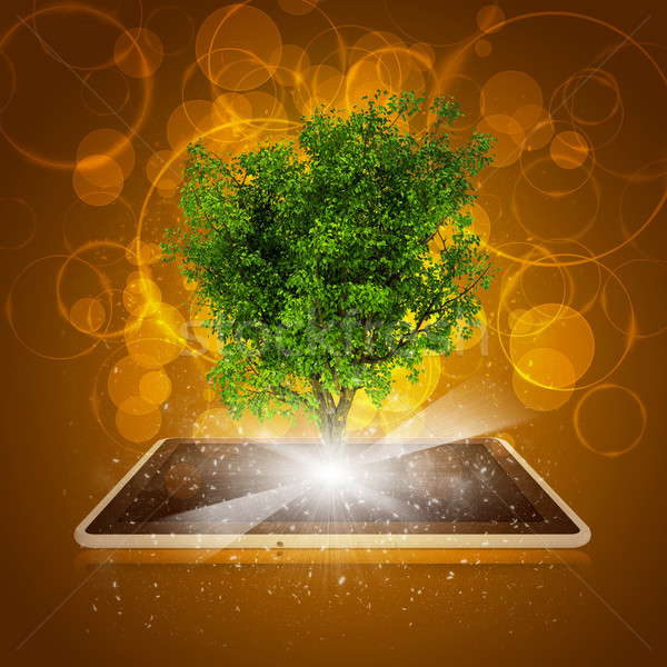 Tablet pc with magical green tree and rays of light Stock photo © cherezoff